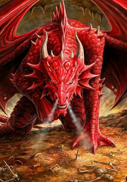 Dragons-8.jpg