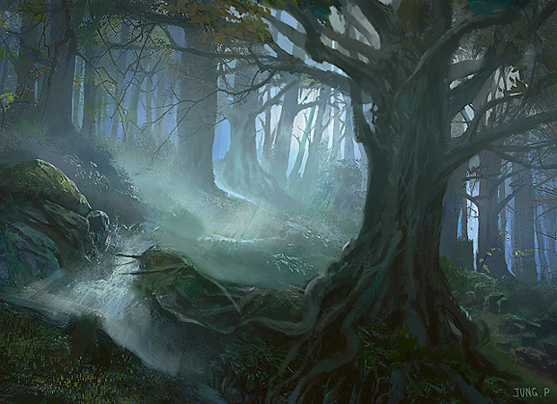 Forest-10.jpg