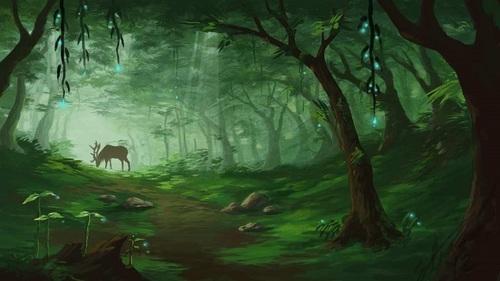 Forest-8.jpg