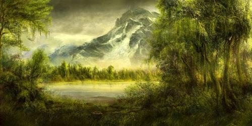 Forest-12.jpg